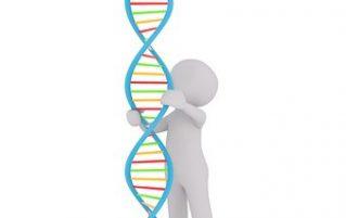Cartoon man holding a DNA model